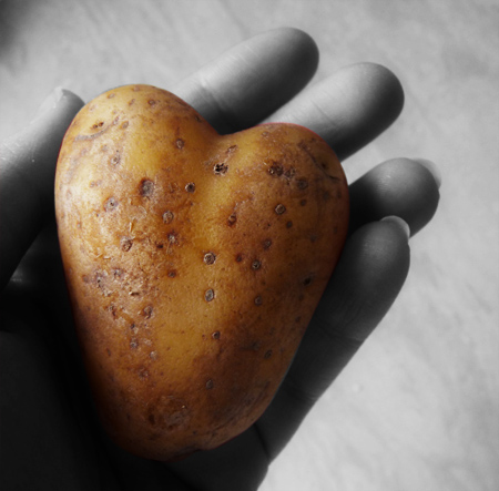 Liebe ist überall.