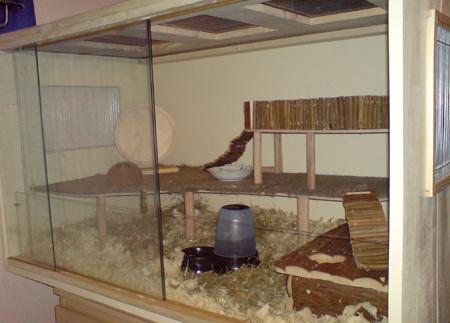 Die Hamstervilla