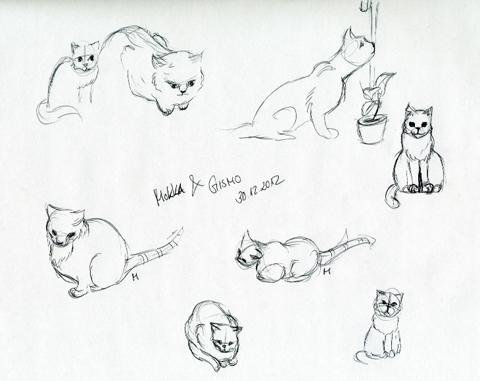 Skizzen Katzen