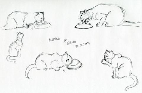 Skizzen Katzen beim Fressen