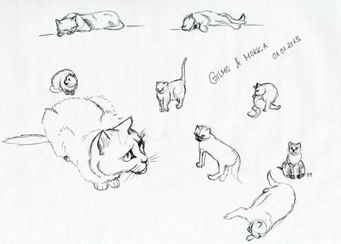 Skizzen Kätzchen