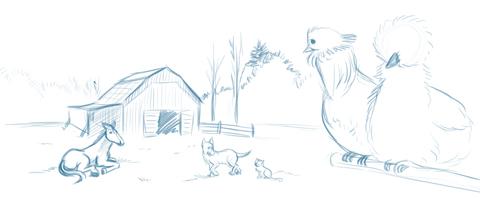 Scribble #1: Leben auf der Farm