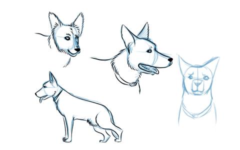 Scribbles Hund