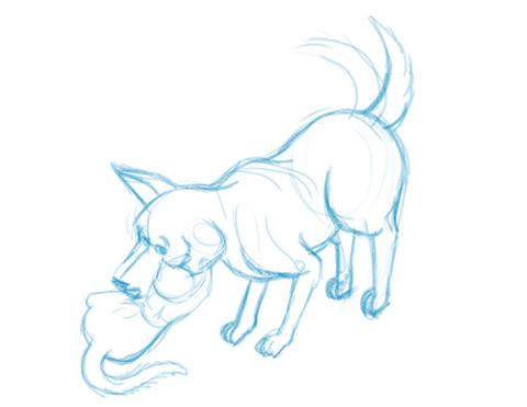 Hund und Katz spielend