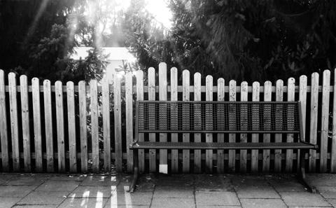 Vor dem Zaun