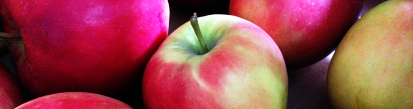 Elster Äpfel