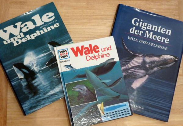 Literatur über Wale