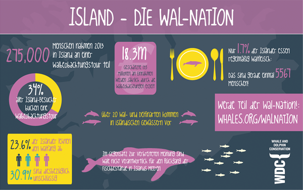 Island - Die Wal-Nation