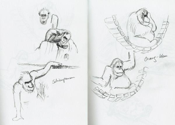 Skizzen Menschenaffen