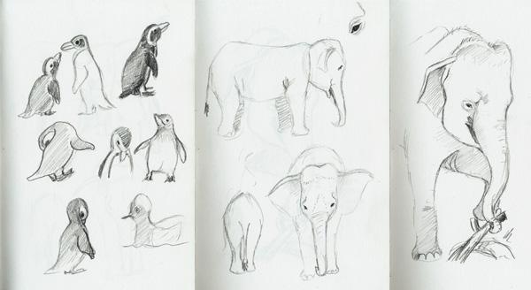 Skizzen von Pinguinen und Elefanten