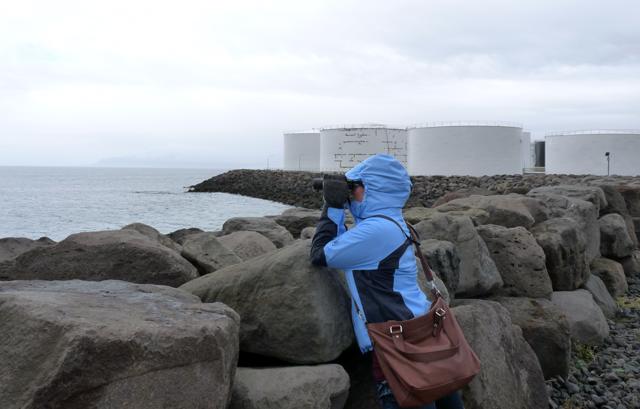 An der Küste in Reykjavík